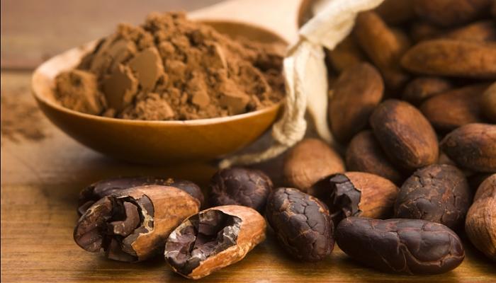 Beneficios del cacaotero