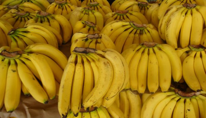 planta con frutas que tiene potacio Plátano