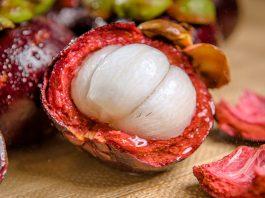 planta de frutos con semillas grandes