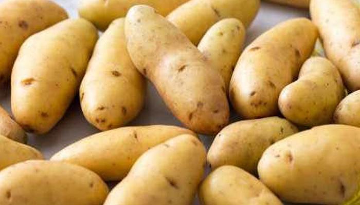 plantas para quemaduras con Patatas