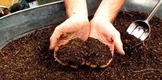 tierra para plantas