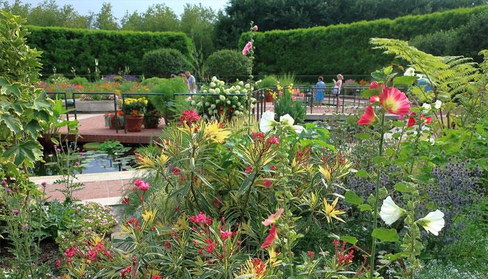 Flores perfectas para el jardín