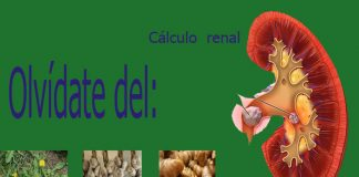 Plantas para limpiar los riñones
