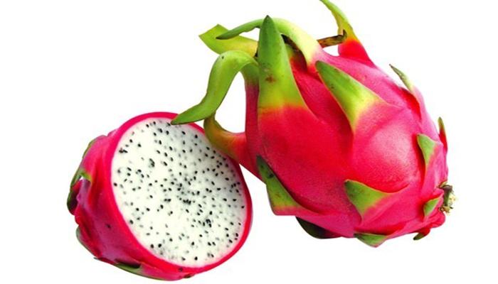 Fruto y Semillas