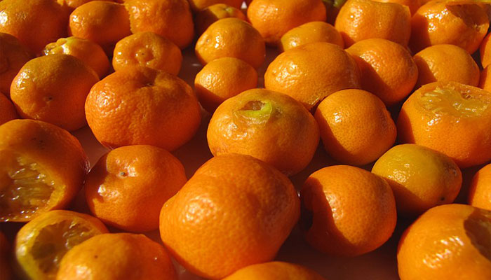 Cosecha de fruto