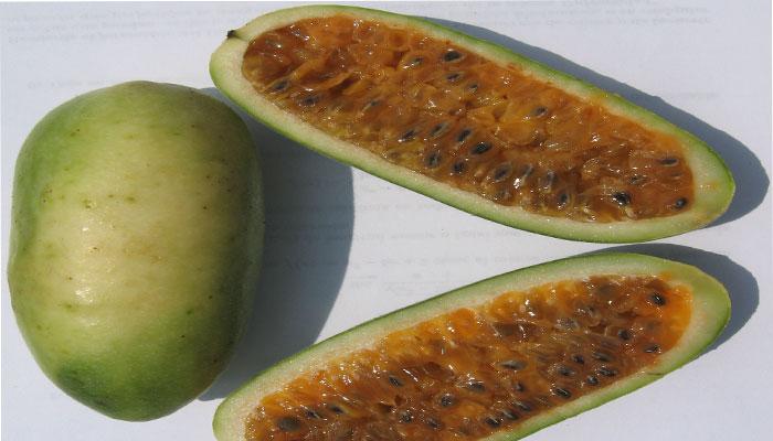 Fruto con semillas