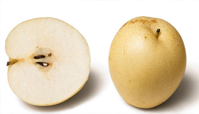 FrutoFruto