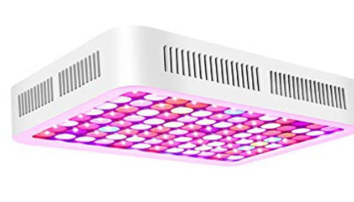 Roleadro LED de espectro completo