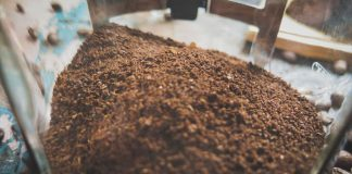 Posos de café para plantas