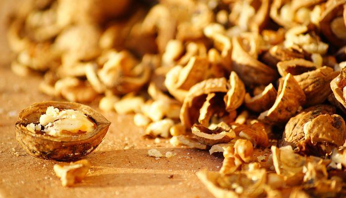 propiedades y beneficios de la nuez de la macadamia