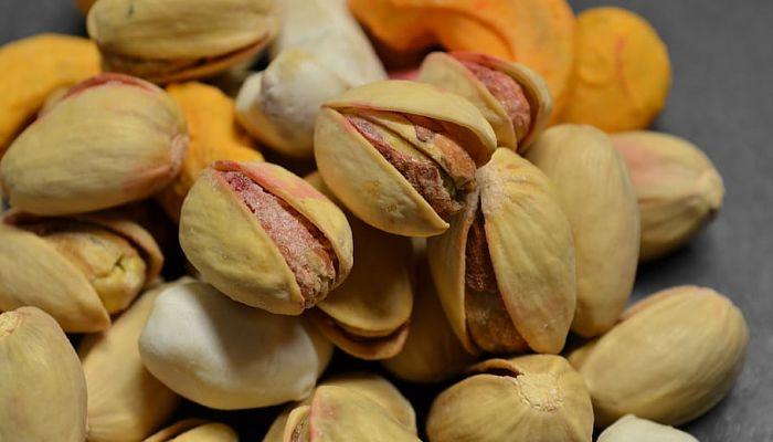 propiedades y beneficios del pistachero